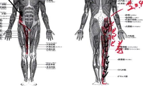 椎間板ヘルニアとすべり症の痛みとシビレを治す3