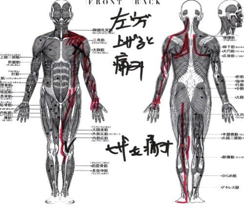 腕が痛くて上がらない四十肩の治し方6