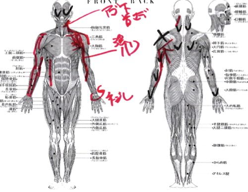 肩が痛くて夜も眠れない五十肩の原因と治療方法2