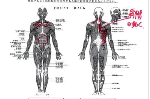 首が痛くて動かない-寝違い-筋違い-治療3