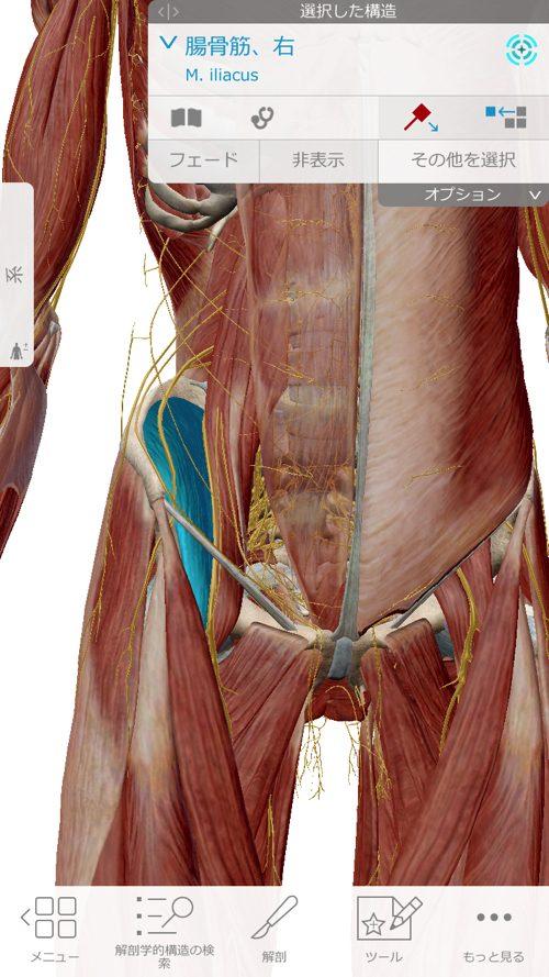 ぎっくり腰-治療-すぐに治る広島の腰痛専門整体院の実例6