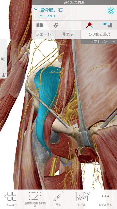 ぎっくり腰-治療-すぐに治る広島の腰痛専門整体院の実例8