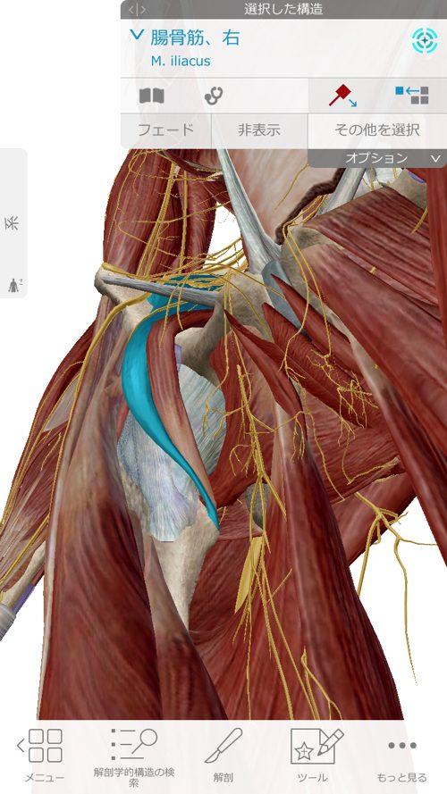 ぎっくり腰-治療-すぐに治る広島の腰痛専門整体院の実例9