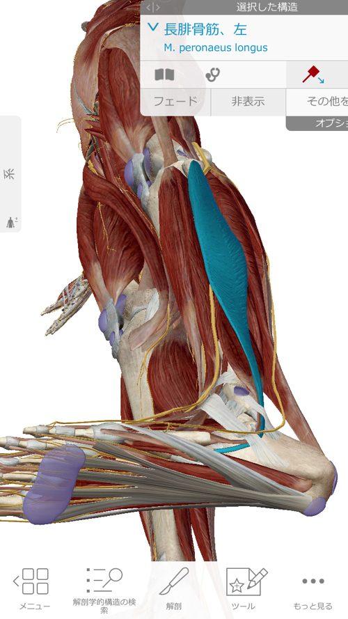 広島「ぎっくり腰」がすぐに治る治療で有名な整体院の治った例0926a-5