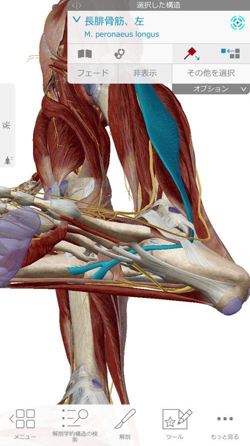 広島「ぎっくり腰」がすぐに治る治療で有名な整体院の治った例0926a-8