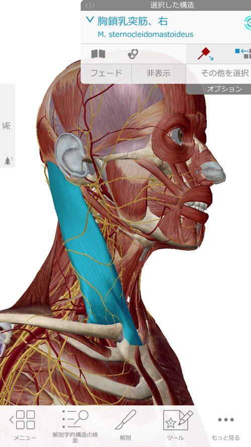 広島-四十肩・五十肩の治療で有名な整体院-治った例1