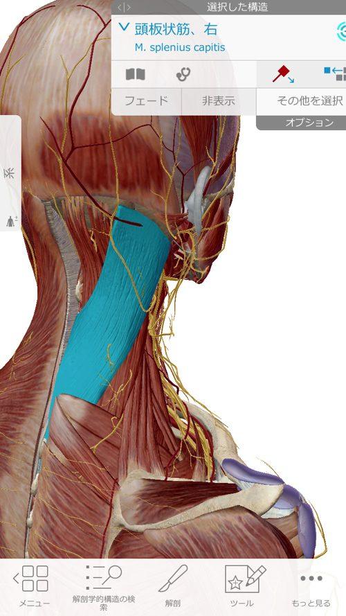 広島-四十肩・五十肩の治療で有名な整体院-治った例4