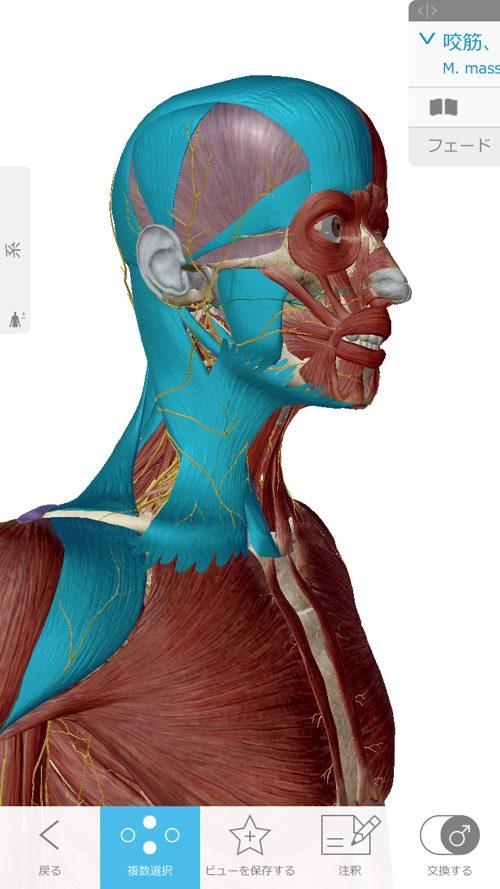 広島-四十肩・五十肩の治療で有名な整体院-治った例8