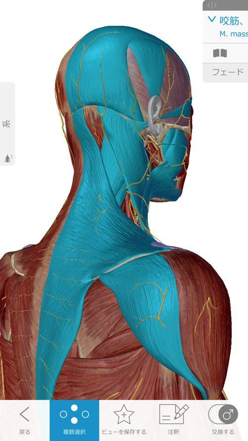 広島-四十肩・五十肩の治療で有名な整体院-治った例9