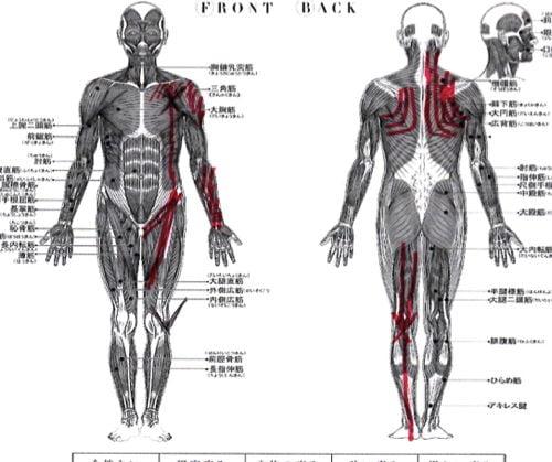 広島-四十肩・五十肩の治療で治ると有名な整体院の実例11