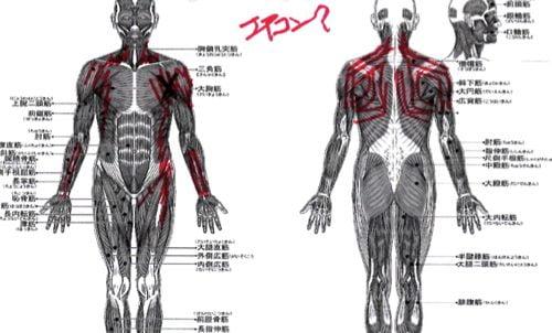 広島-四十肩・五十肩の治療で治ると有名な整体院の実例13