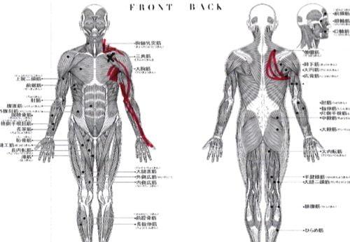 広島-四十肩・五十肩の治療で治ると有名な整体院の実例17