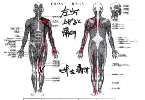 広島-四十肩・五十肩の治療で治ると有名な整体院の実例9