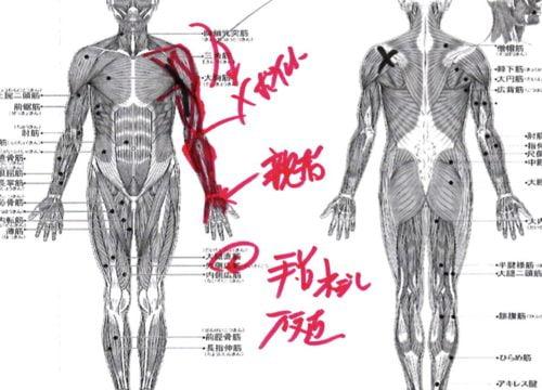 肩が上に上がらない、腕が回らない四十肩・五十肩等の肩の痛みの治療7