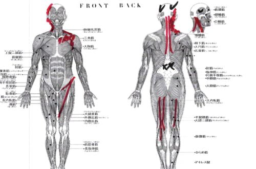頭痛外来-偏頭痛と腰痛の治療-頭痛解消に効くヘッドマッサージ-広島2