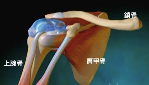 1肩が上に上がらない、腕が回らない四十肩・五十肩等の肩の痛みの原因と治療a12