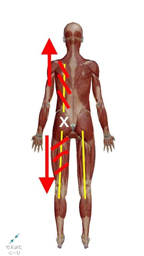 1腰痛-ぎっくり腰の原因と治療方法-広島で有名-腰痛専門整体院1-e1506590766677