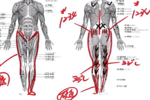 ヘルニアの治療と治し方-腰の痛み-脚の痺れ-膝に力が入らないー歩けない-原因11