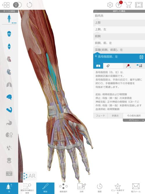 ばね指の原因と治療方法_ばね指の治し方解説_整体広島眞田流の改善例14