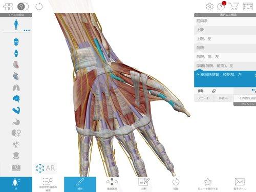 ばね指の原因と治療方法_ばね指の治し方解説_整体広島眞田流の改善例8