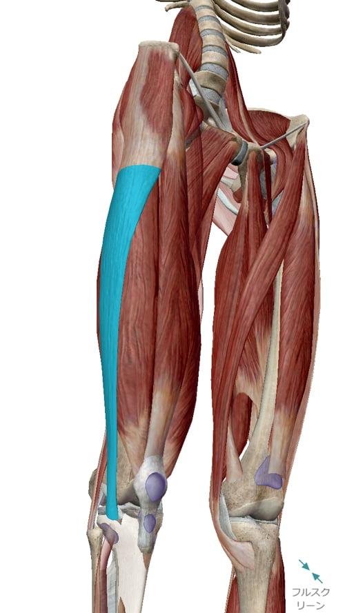 広島_膝の痛みの治療で有名な整体院の記録10