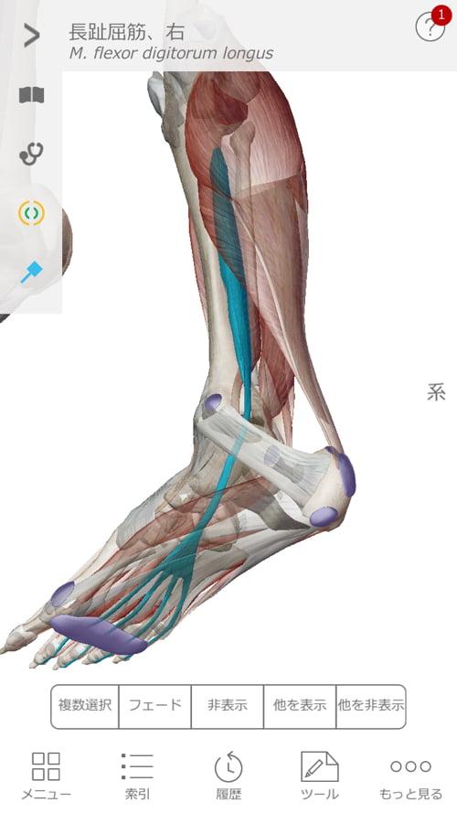 広島_膝の痛みの治療で有名な整体院の記録22