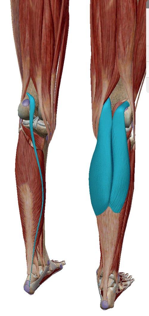 歩くと膝が痛い変形性膝関節症と膝の水たまり治療7