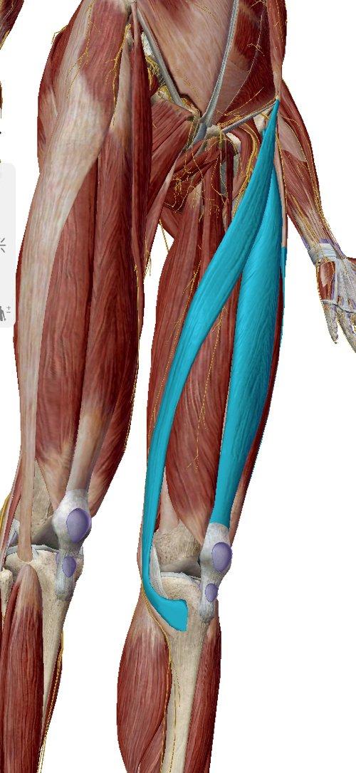 歩くと膝が痛い変形性膝関節症と膝の水たまり治療8
