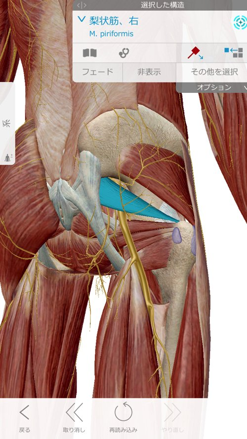 広島で腰痛治療専門の整体院の改善記録3