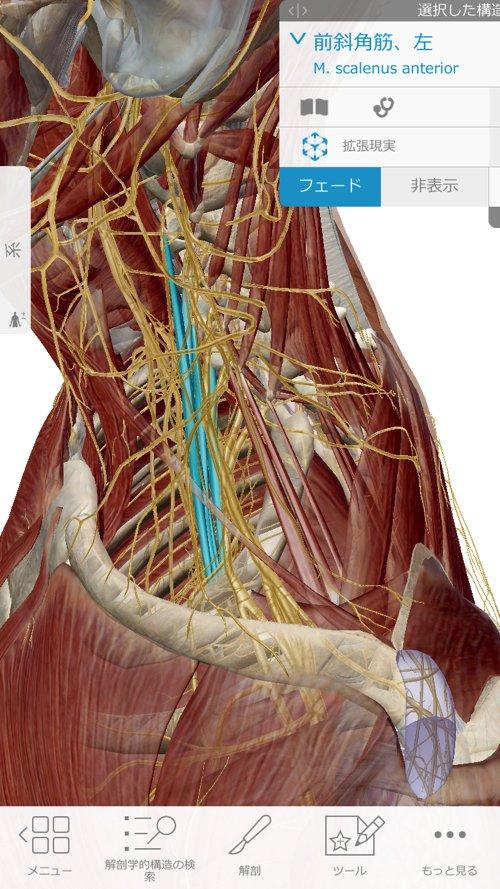 頚椎ヘルニアで指の痺れ原因と治療方法6 (1)