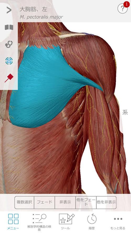 頚椎ヘルニアで指の痺れ原因と治療方法9