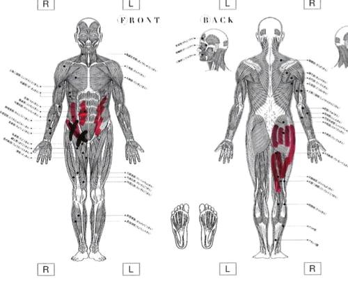 転んだ後足の付根が痛くて歩けなくなったお客様の改善例4