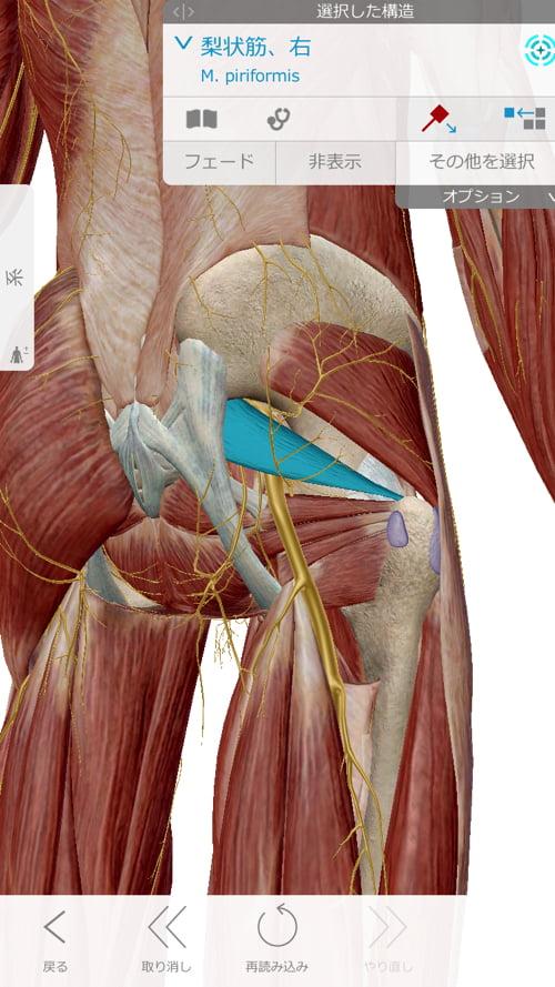 転んだ後足の付根が痛くて歩けなくなったお客様の改善例7