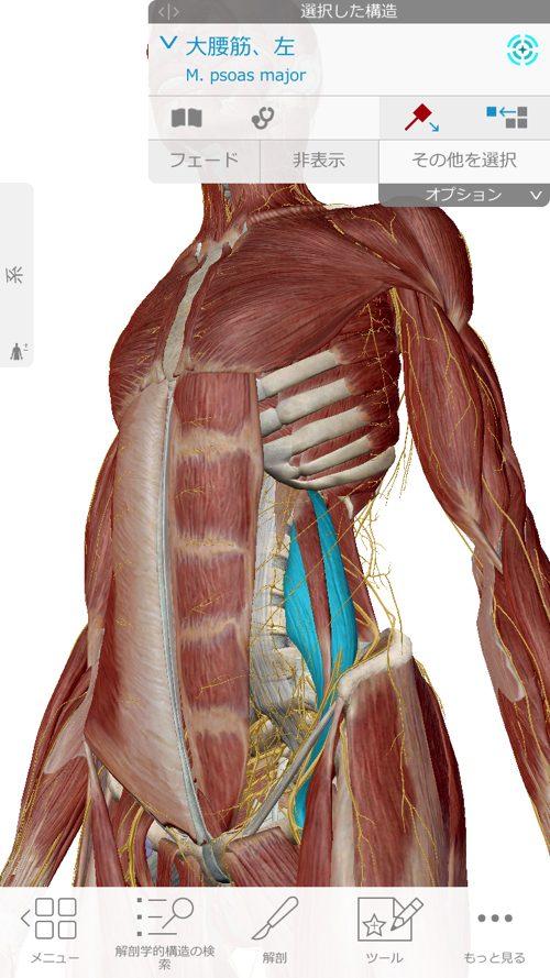 くしゃみで「ぎっくり腰」になった際の治療-広島で腰痛-ぎっくり腰の治療で有名な整体広島眞田流の実例2