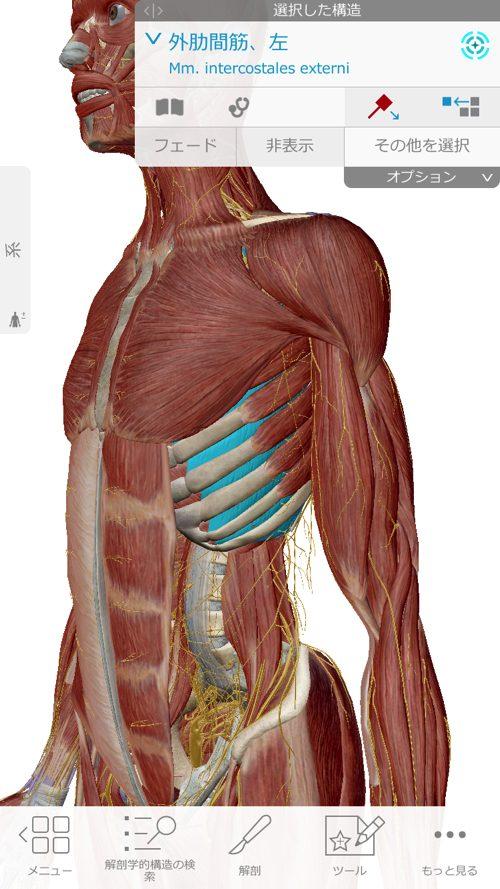 くしゃみで「ぎっくり腰」になった際の治療-広島で腰痛-ぎっくり腰の治療で有名な整体広島眞田流の実例5
