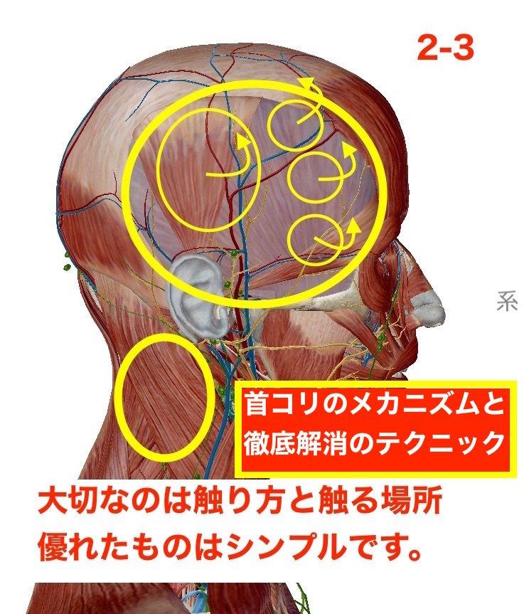 ヘッドスパの極上テクニック2首コリ解消