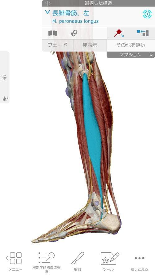 ヘルニアは誤診か-ヘルニア手術失敗か-ヘルニア手術で歩けなくなった女性の回復施術10