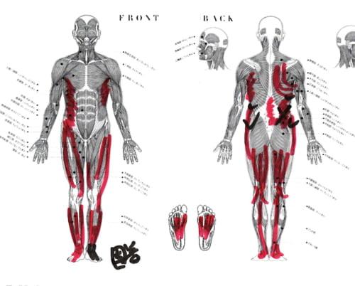原因不明の腰の痛みの治療方法と原因解明_整形外科で注射や湿布をしても治らない例