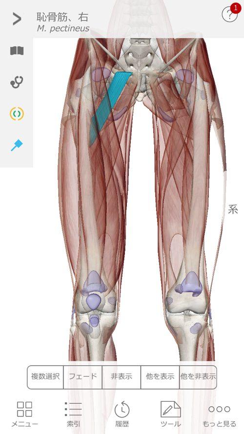 広島で椎間板ヘルニアの治療で有名な整体院の記録-腰の痛みが消えて治った例12