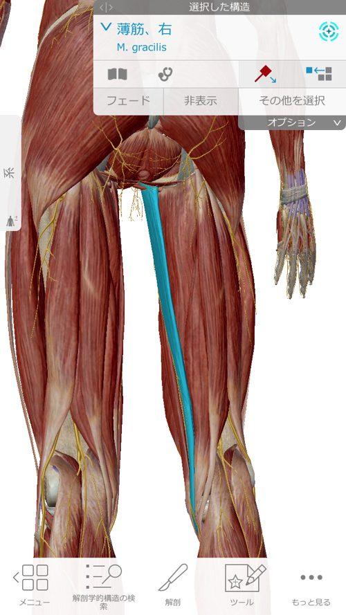 広島で椎間板ヘルニアの治療で有名な整体院-整体広島眞田流-治った例1