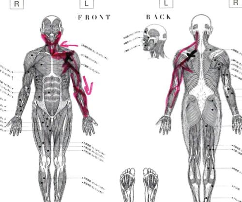 広島_肩の痛みを治す-四十肩治療で有名な整体院