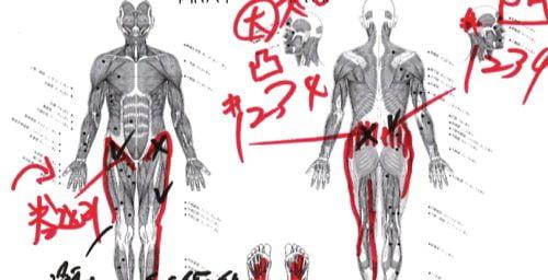椎間板ヘルニアと脊椎狭窄症の原因と治療方法-広島で椎間板ヘルニア治療で有名な整体院の記録5