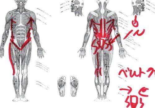痛み止めの注射が効かない-腰の痛み-車の運転で酷くなる腰痛の原因と治療法