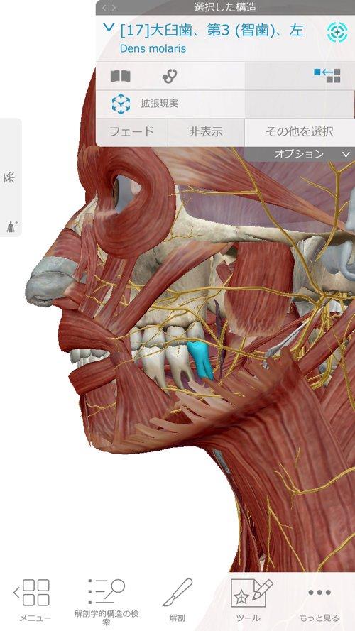 顎や顔_身体のシビレの原因と治療方法