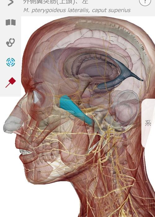 首のコリ_目の奥が痛い_原因と治し方_治療方法_広島の整体院の実例